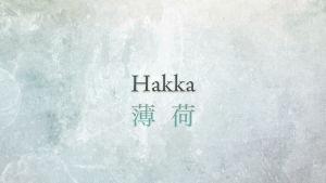 Hakka / cloudchair