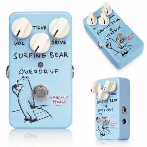 Surfing Bear Overdrive