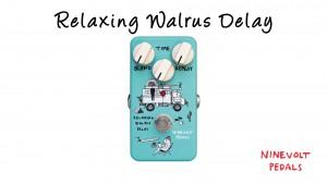 Relaxing Walrus Delay